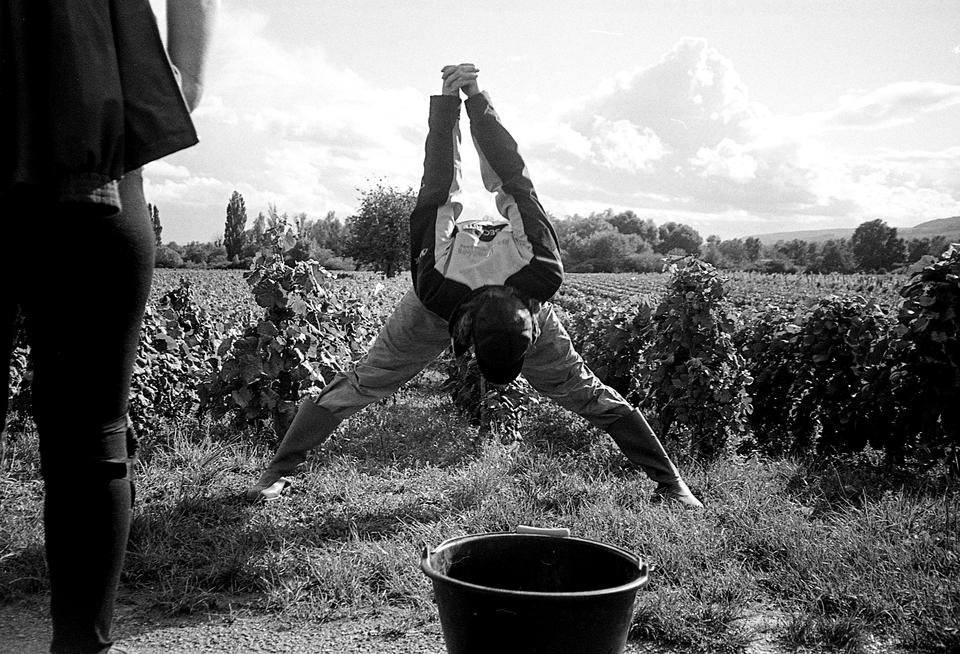 Fotografia autorstwa Jerzego Rzechanka