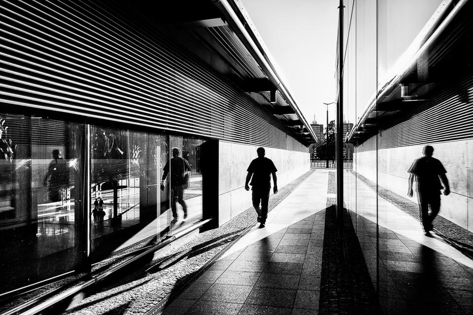 Fotografia autorstwa Tomasza Aulicha